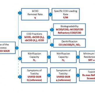 Respirometry Protocol