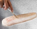 Cut 1 cm³ of the fish with a sterile scalpel