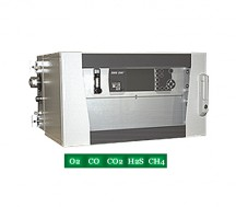 SWG 200-1 Biogas