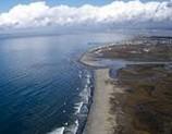 Coastal and estuary